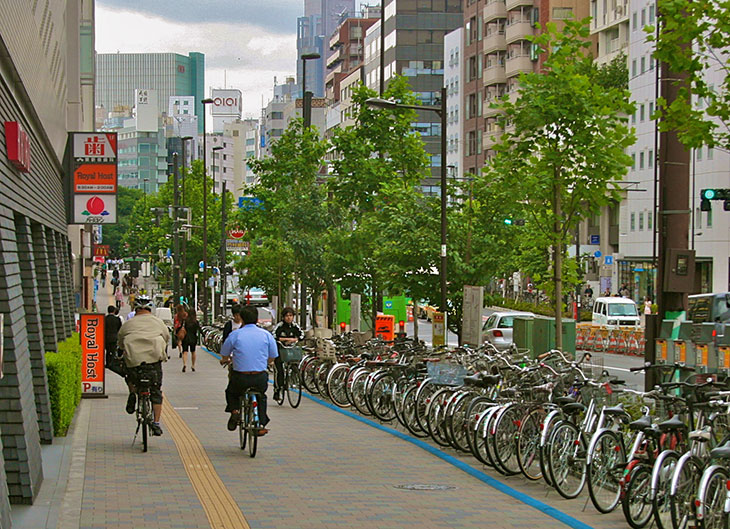 HighDensityCyclingModel