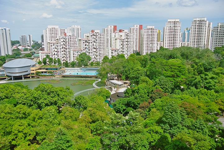 BukitPanjangPark