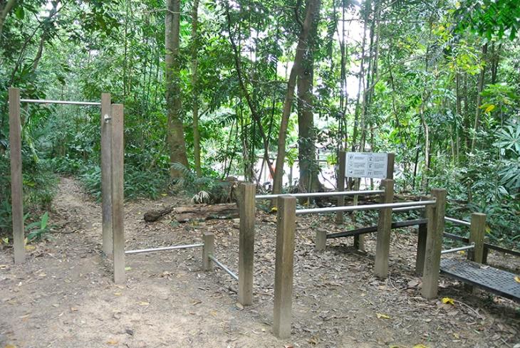 Gym_BukitTimahReserve